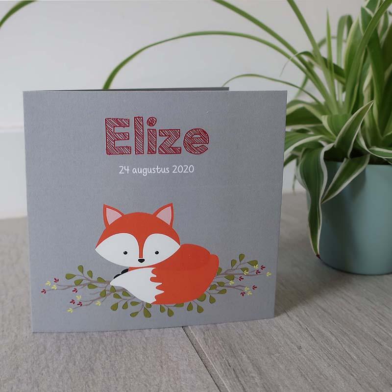 Geboortekaartje Elize vosje