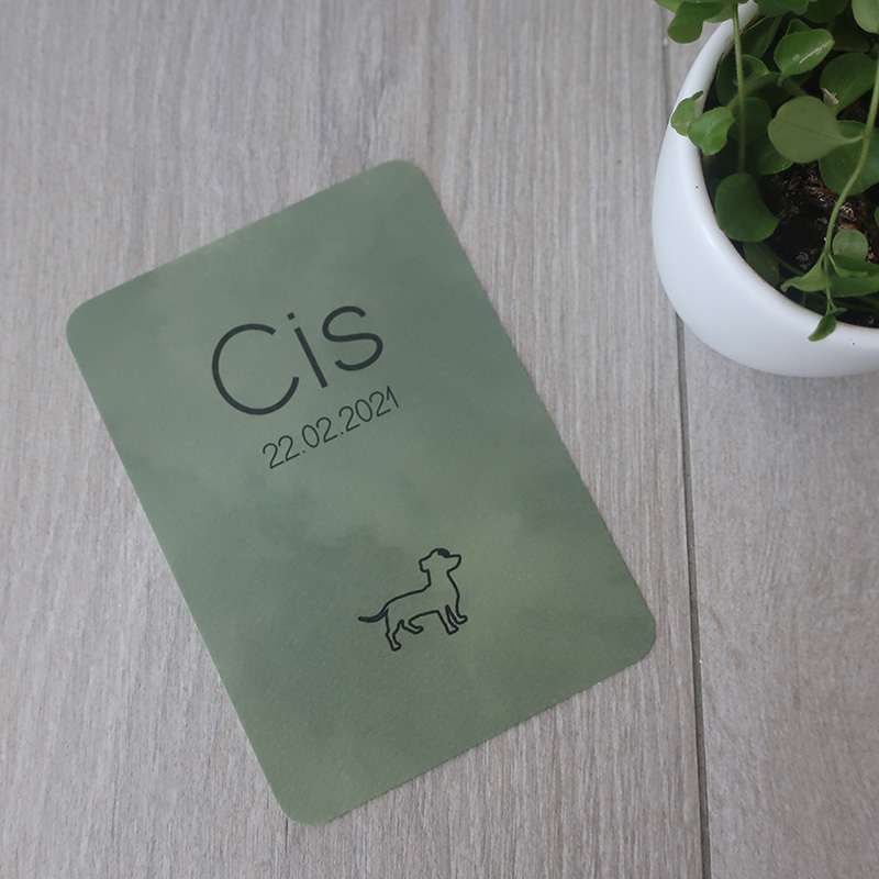 Geboortekaartje Cis ronde hoeken hondje groen