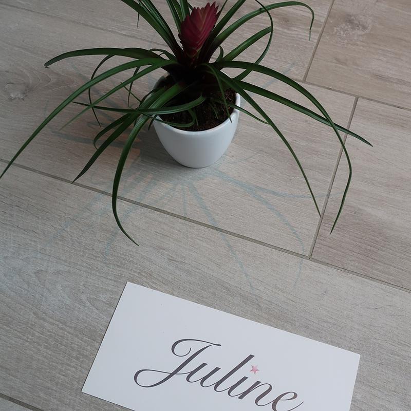Geboortekaartje Juline sierlijk eenvoudig strak