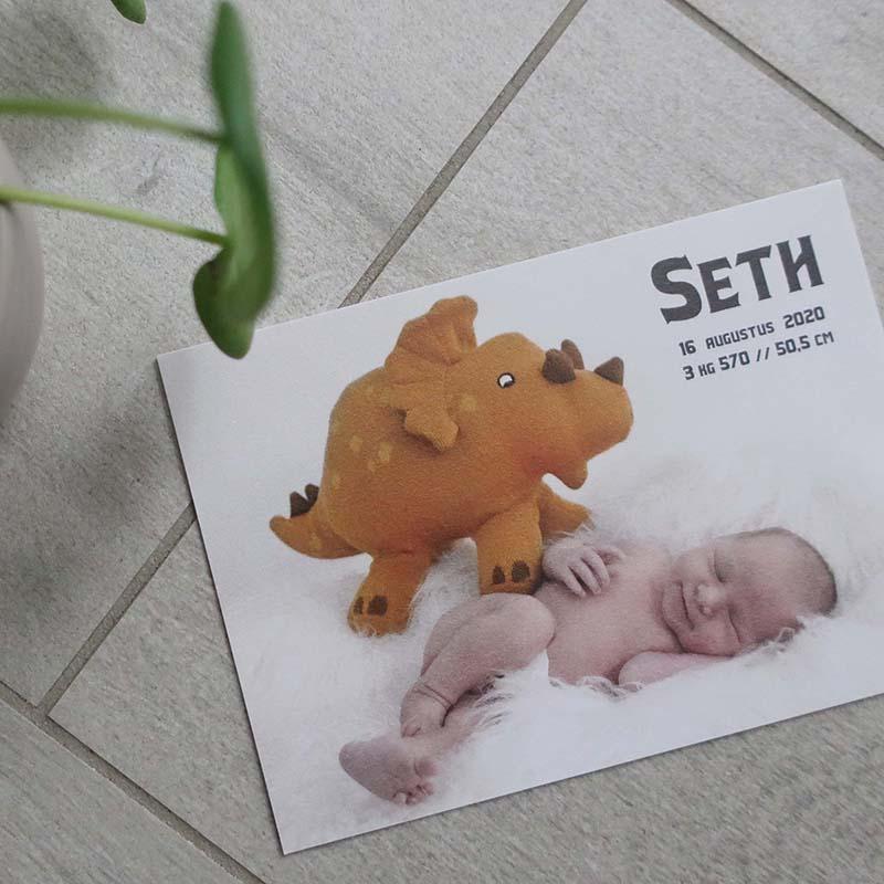 Geboortekaartje Seth dino multilift